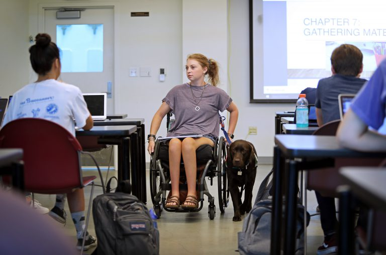 As a student with recent disabilities, Mariel White had to reacquaint herself with the UF campus in fall 2019 after a nearly two-year absence. That emotional first semester back saw her reunited with old friends and supported by new ones, including her trusty service dog Lassie, short for Molasses.