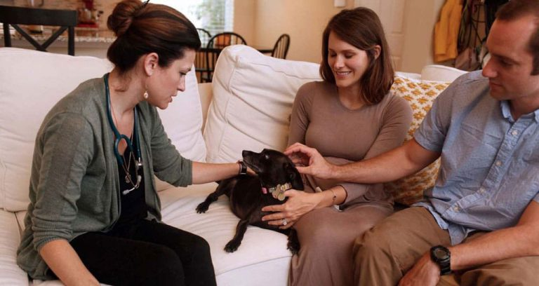 """For hospice vets, counseling pet owners is just as much a part of their work as tending to geriatric and terminally ill animals. """"That's a hugely important part of what we do, validating the decision to say goodbye,"""" says Dr. McVety. """"At the end of the day, we are left with an intense humility for life and death; the work we do provides meaning."""""""