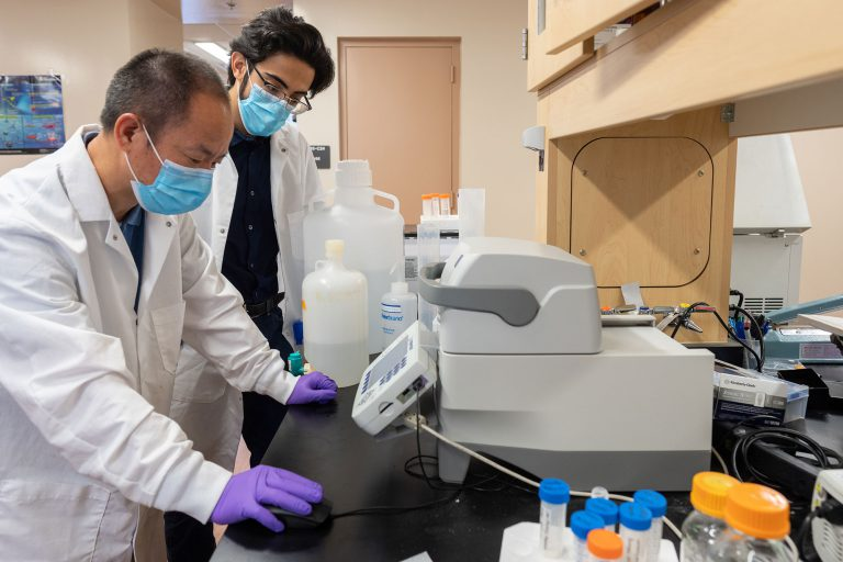Yang Shen and Destino Roman, two lab team members, have been assisting Andrew Liu with his research on Smith-Kingsmore Syndrome.